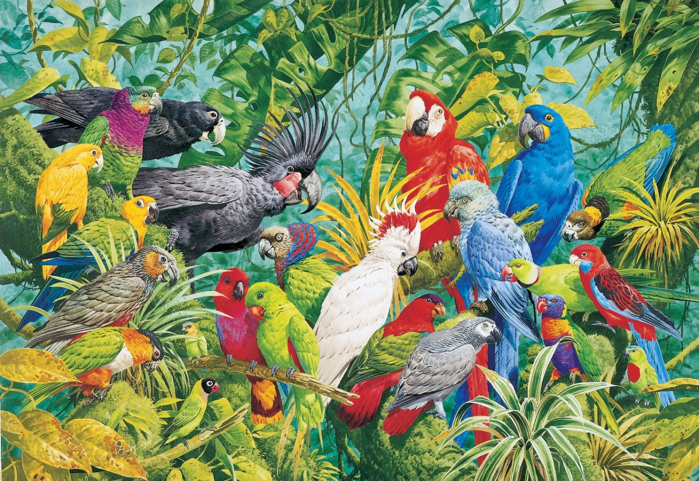 LUMJHG016_Rainforest_Parrots.jpg