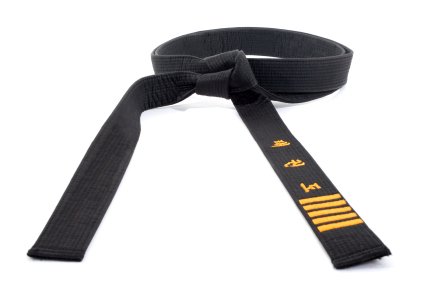 Social-Media-Lesson-Black-Belt-Style.jpg