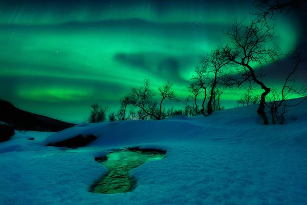 best-astro-photographs-space-pictures-2012-aurora_59485_600x450.jpg