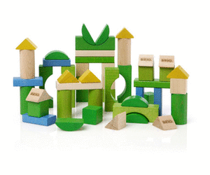 brio-green-line-blocks-50-pieces.png/