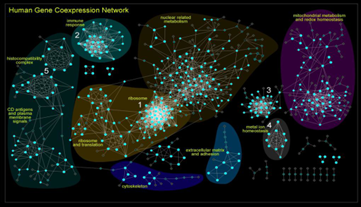coexpression_network.png