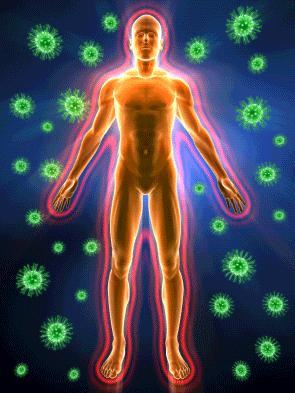 immune-system-rejuvenation.jpg