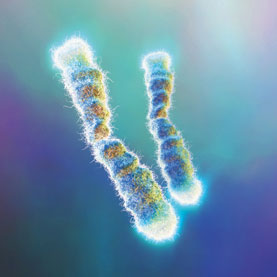 long-telomeres.jpg